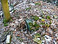 15-02-08-Aussichtsturm-Eberswalde-Brunnenberge-RalfR-P1040297-04.jpg