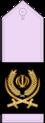17- IRIADF-BG2.png