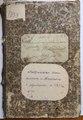 1868. Метрическая книга синагоги м. Кошеватого о родившихся.pdf