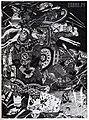 1944. Иллюстрация к поэме Слово о полку Игореве.jpg