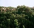 19880514160DR Hohnstein von der Hocksteinaussicht.jpg