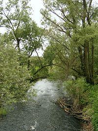 Rzeka Ilanka.