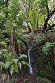 2012-10-27 12-29-42 Pentax JH (49283730796).jpg