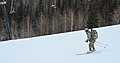 2016 US Army Alaska Winter Games 160126-A-MI003-119.jpg