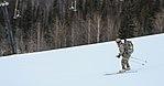 2016 US Army Alaska Winter Games 160126-A-MI003-119.jpg