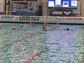 2016 Water Polo Olympic Qialification tournament ITA-GER 3.jpeg