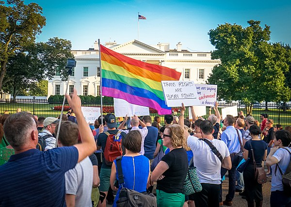 Activism is a form of politics. 2017.07.26 Protest Trans Military Ban, White House, Washington DC USA 7646 (36056769341).jpg