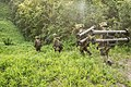25.7.15 第四十戦闘団訓練検閲4中隊対戦車小隊手87ATM搬送実施中 装備 123.jpg