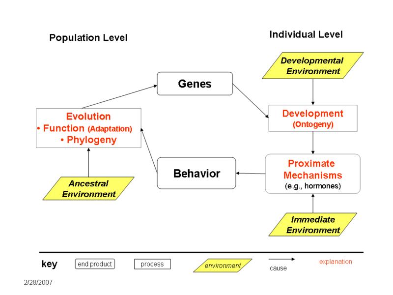 biologia 2 lyceum operon pdf free