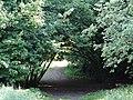 617683 A 683 Krakow Krzesławice Wankowicza 25 park w zespole dworsko parkowym 50.JPG