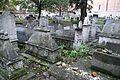6669vik Na Krakowskim Kazimierzu - cmentarz. Foto Barbara Maliszewska.jpg