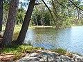 78 Minow Lake, Nanabush Trail. Petroglyph Provincial Park.jpg