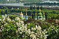 80-382-5001 Grishka park DSC 3334.jpg