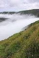 Açores 2010-07-23 (5154697561).jpg