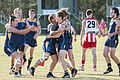 AFL Bond University Bullsharks (18120597456).jpg