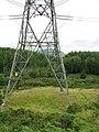 A bracken-free section of the path beneath the pylon - geograph.org.uk - 513598.jpg