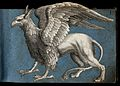 A griffen; side view of the mythical beast Wellcome V0021376.jpg