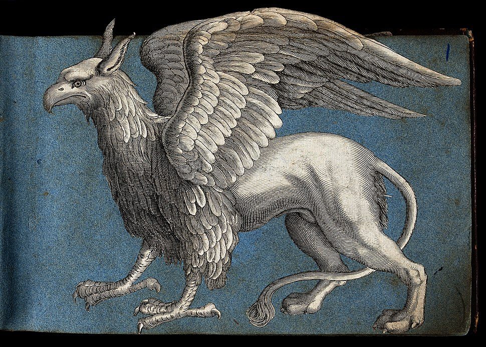 A griffen; side view of the mythical beast Wellcome V0021376
