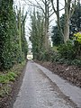 A lane leading to Coldred Road - geograph.org.uk - 643612.jpg