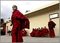 A little monk among many others (2266893987).jpg