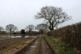 Access Track heading South from Spring Field Farm (geograph 6086240).jpg
