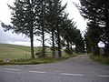 Access road to Mains of Rhynie - geograph.org.uk - 1522288.jpg