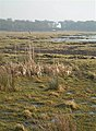 Across The Saltings - geograph.org.uk - 700472.jpg