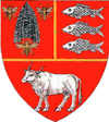 Coat of Arms of Vaslui county