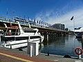 Acuario De Sydney, Australia - panoramio (1).jpg