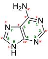 Adenine structure chimique.png