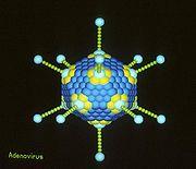 Imagen de un virus creada por un ordenador.