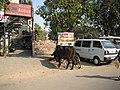 Ahmedabad2007-065.JPG