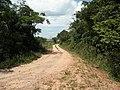 Alameda Cândido Brasil Moro - Palma - Santa Maria, foto 01 (sentido N-S).jpg - panoramio.jpg