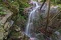 Albbruck Rickenbachwasserfall Bild 2.jpg