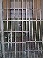 Alcatraz Cells 1.JPG