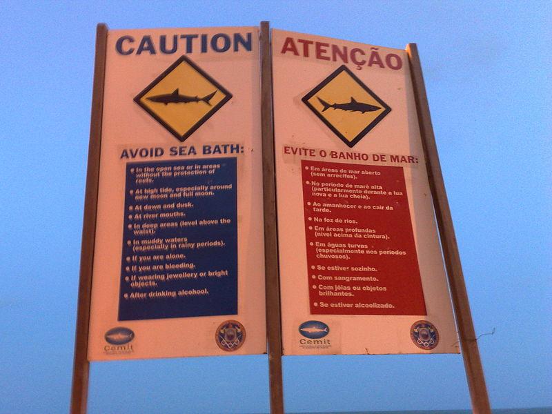 Ficheiro:Alerta de tubarão em Jaboatão dos Guararapes.jpg