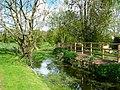Allington - The River Bourne - geograph.org.uk - 1279807.jpg