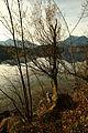 Altausseer See 78907 2014-11-15.JPG