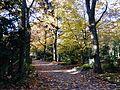 Alter Ehrenfelder Friedhof Oktober 2016 01.jpg