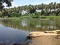 Amaravathi River.jpg