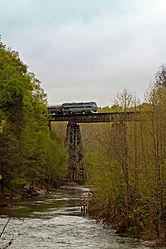 Amtrak Engine 184 Crosses the Tye River (5650805471).jpg