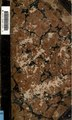 An account of the Island of Jersey - with appendix of records, etc. (IA accountofislando00falliala).pdf
