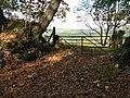 An autumn strewn gateway on Cefn Ydfa - geograph.org.uk - 1017218.jpg