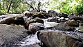 Anakkal Water Falls - panoramio (8).jpg