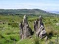 Ancient stones, Meenkeragh - geograph.org.uk - 1368280.jpg