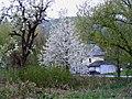 Andel- die Moselbahn - geo.hlipp.de - 37746.jpg