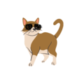 Anony-meows logo.png