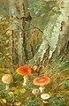 Anthonore Christensen - Forest floor with mushrooms.jpg