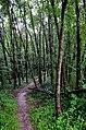 Appalachian Trail. Carlise, Pennslyvania - panoramio.jpg