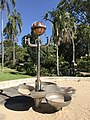 Apparatus for Germination of Achaemienis Ambulatii (Pony Plant) in the City Botanic Gardens, Brisbane by Russell Anderson, 2014.jpg